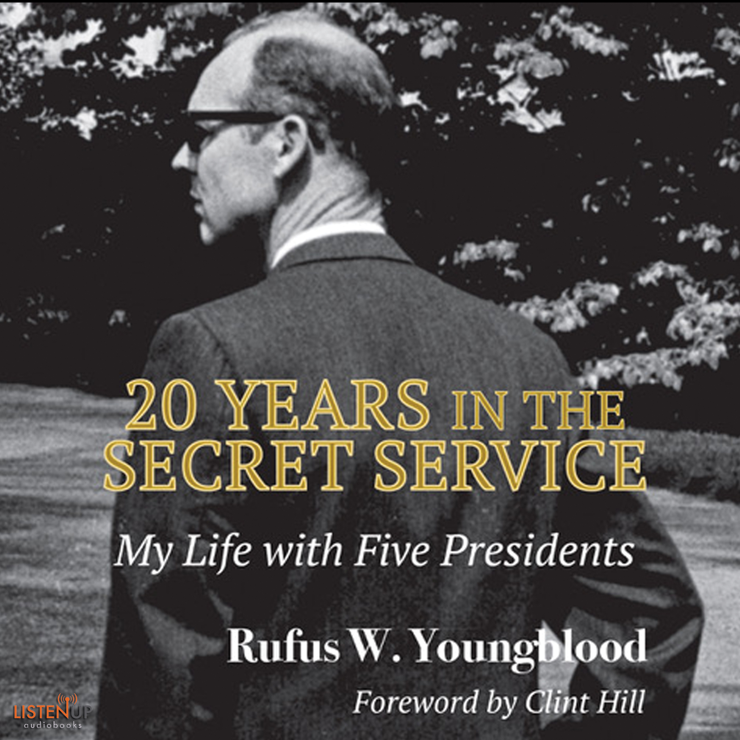20 Years in the Secret Service cover image