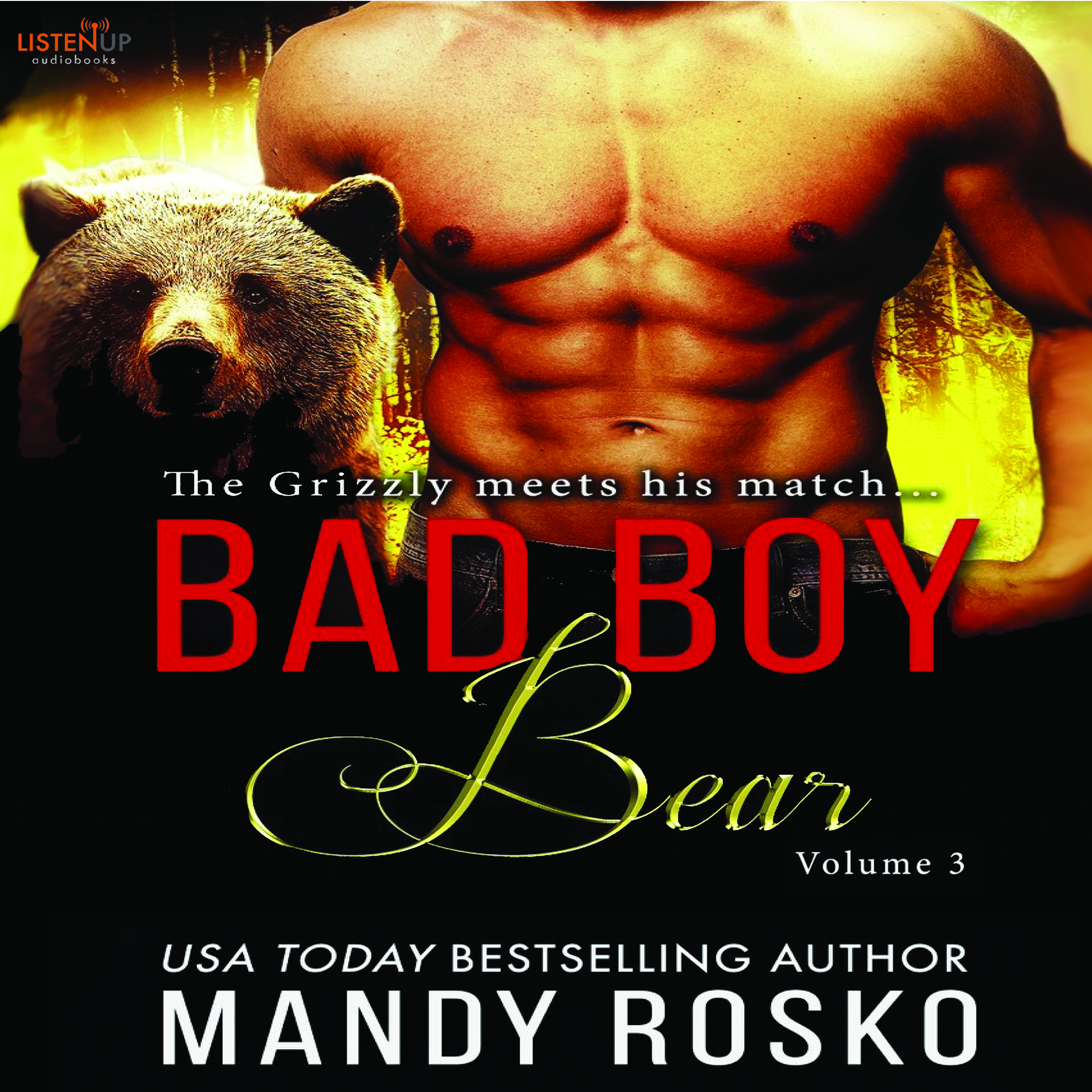Bad Boy Bear Vol. 3 cover image