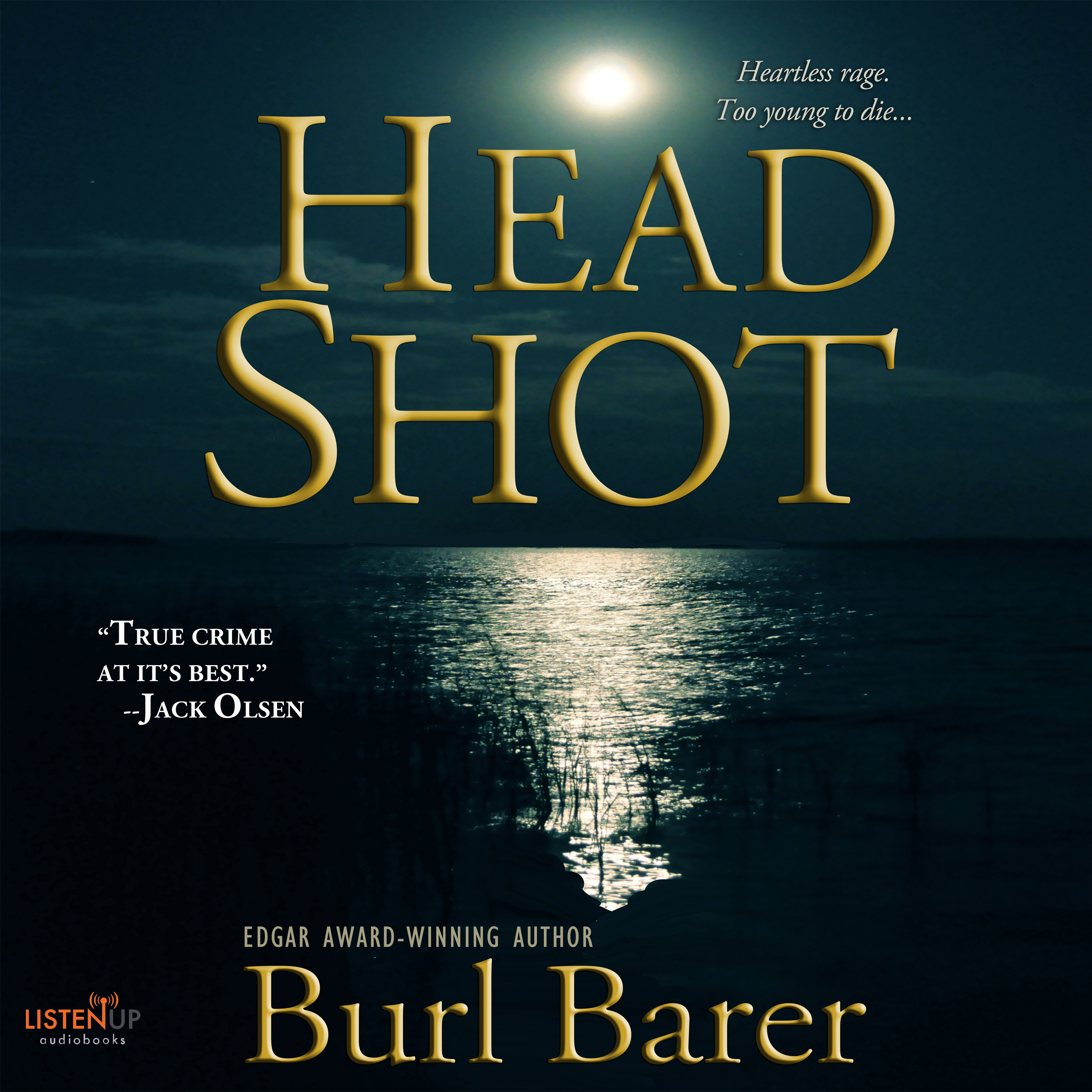 Head Shot cover image