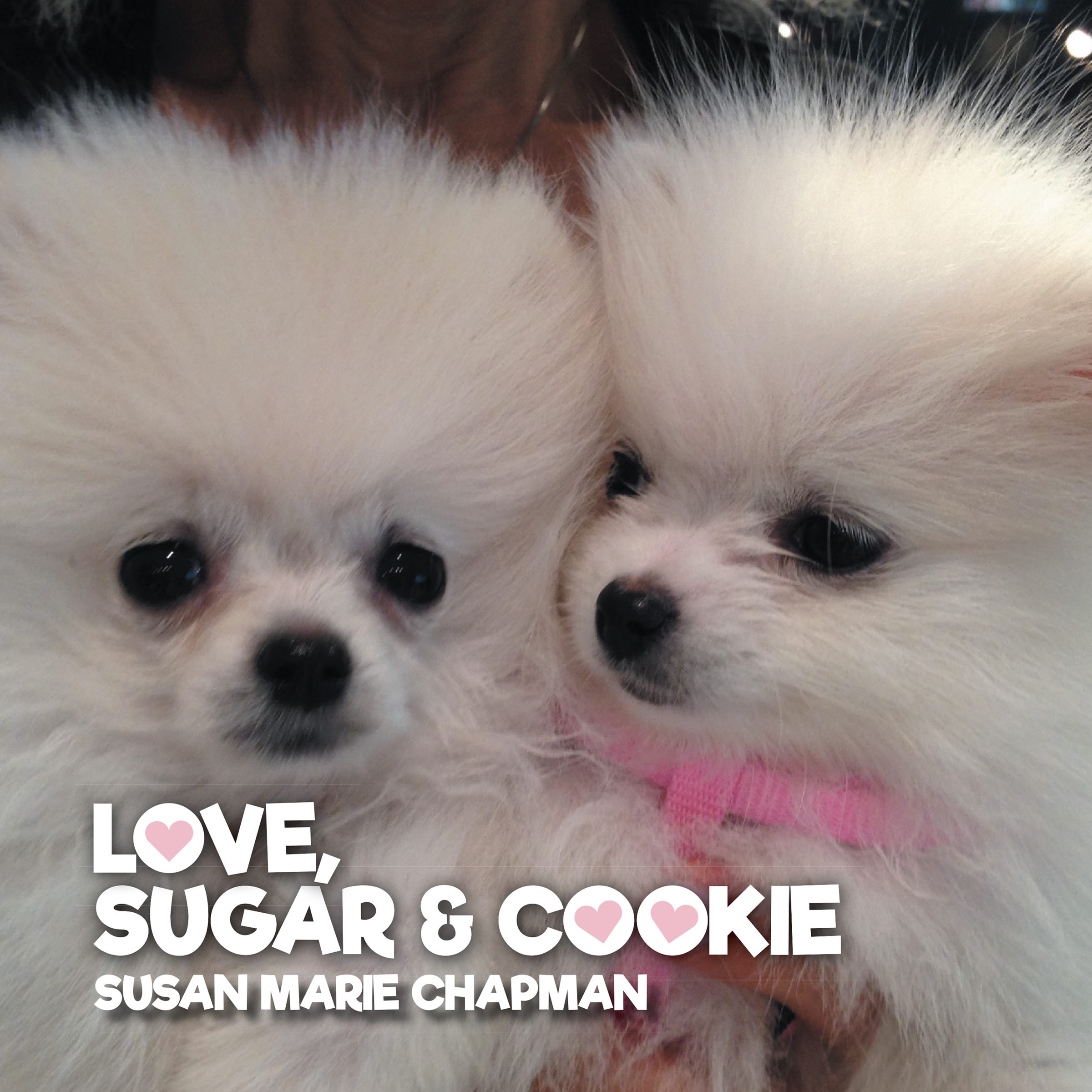 Love, Sugar and Cookie