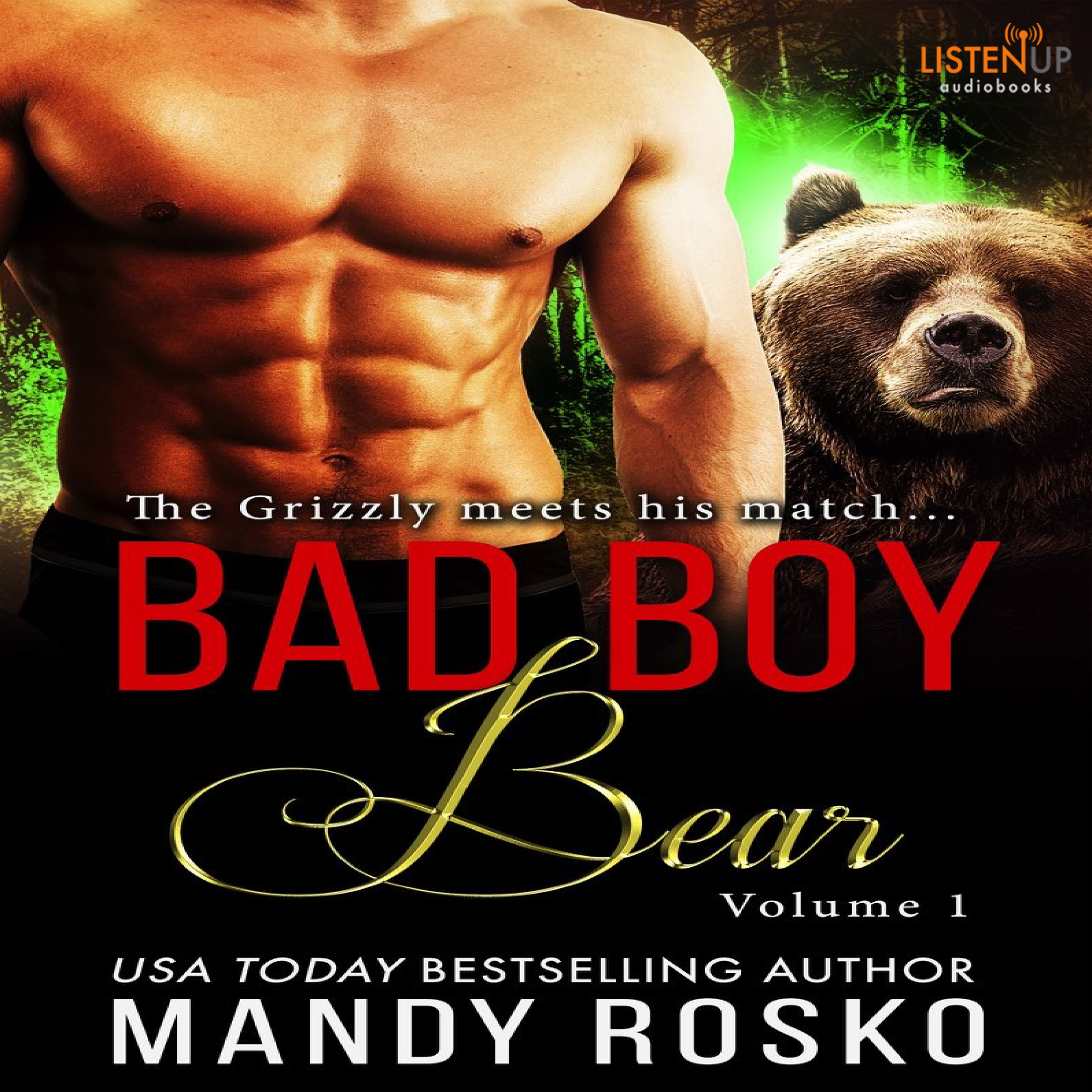 Bad Boy Bear cover image