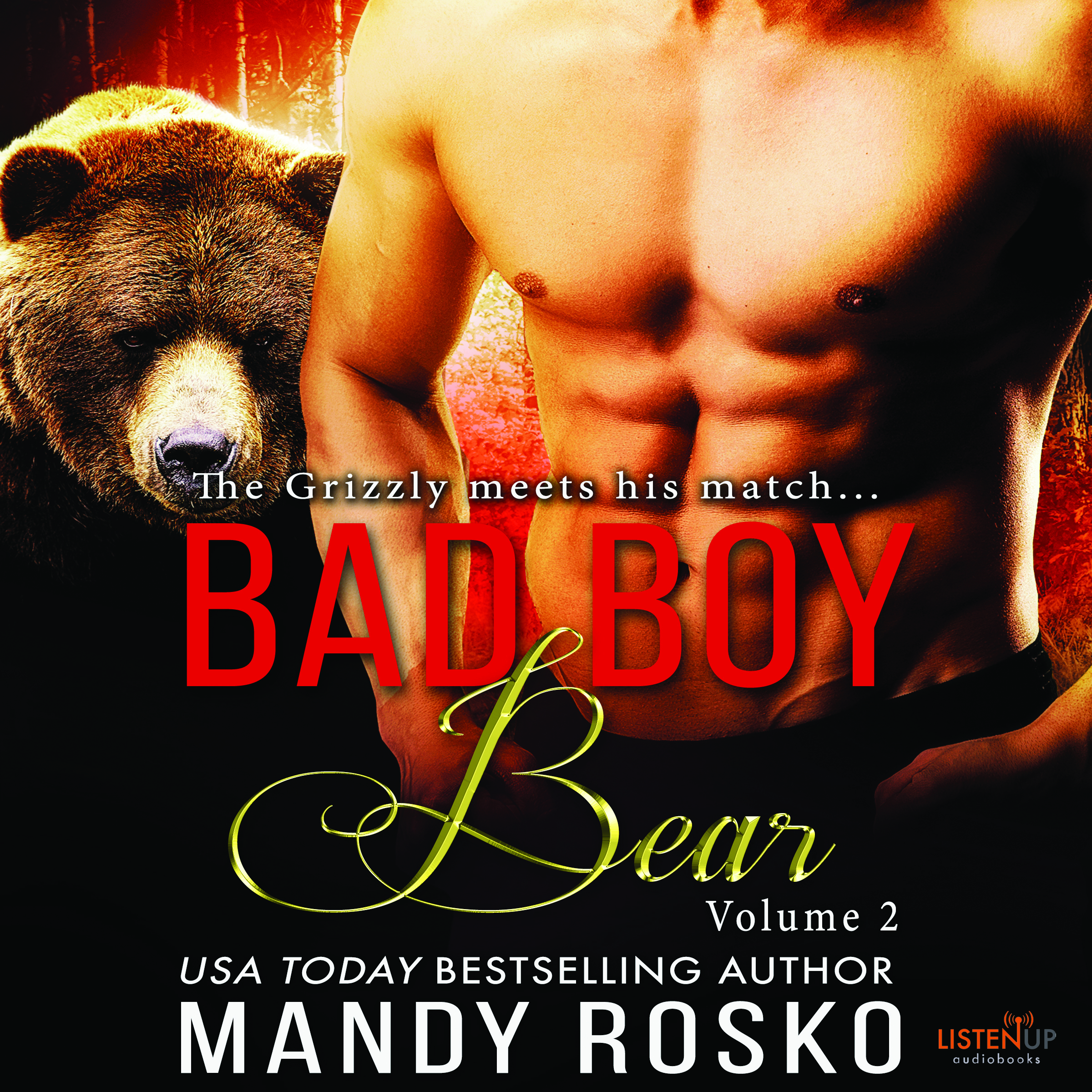 Bad Boy Bear Volume 2 cover image