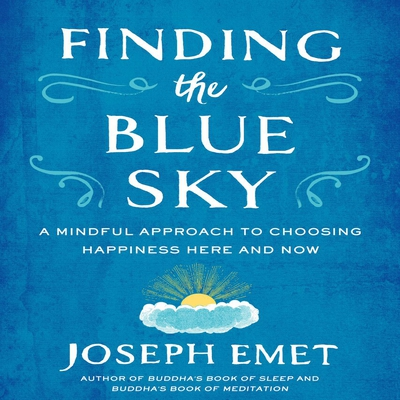 Finding the Blue Sky cover image
