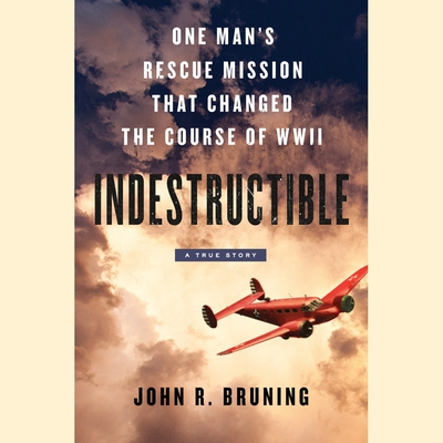 Indestructible cover image