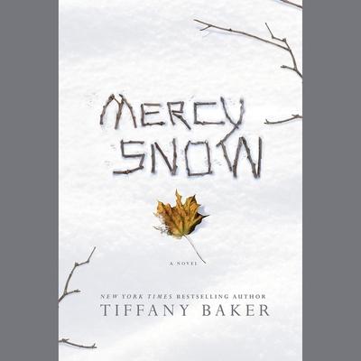 Mercy Snow cover image