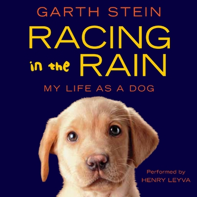 Racing in the Rain cover image