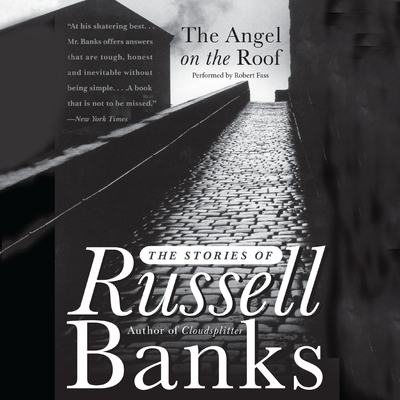 The Angel on the Roof cover image