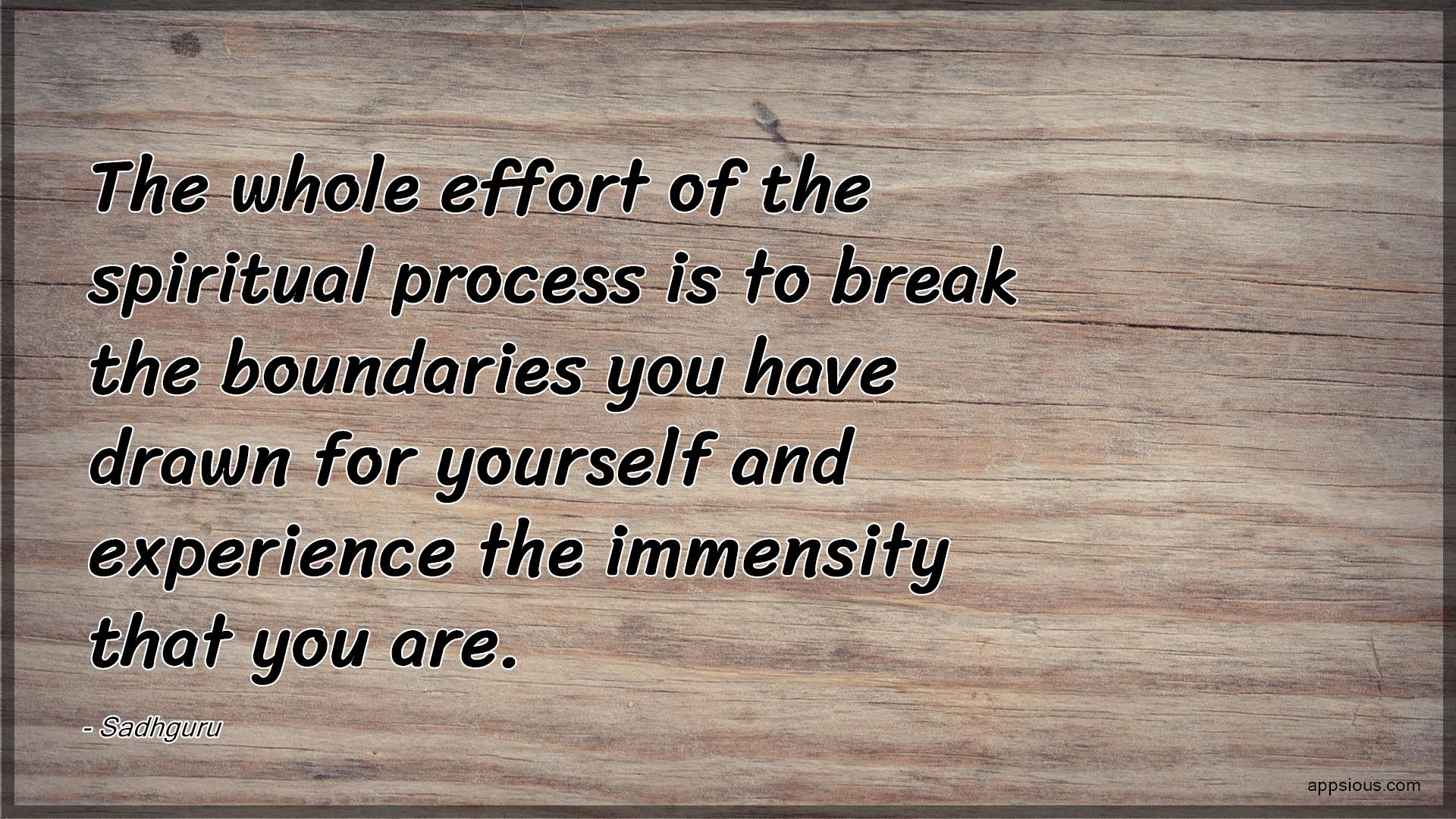 The whole effort of the spiritual process is to break the boundaries you have drawn for yourself and experience the immensity that you are.
