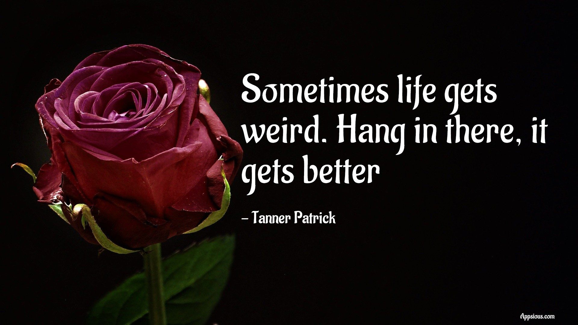 Sometimes life gets weird. Hang in there, it gets better