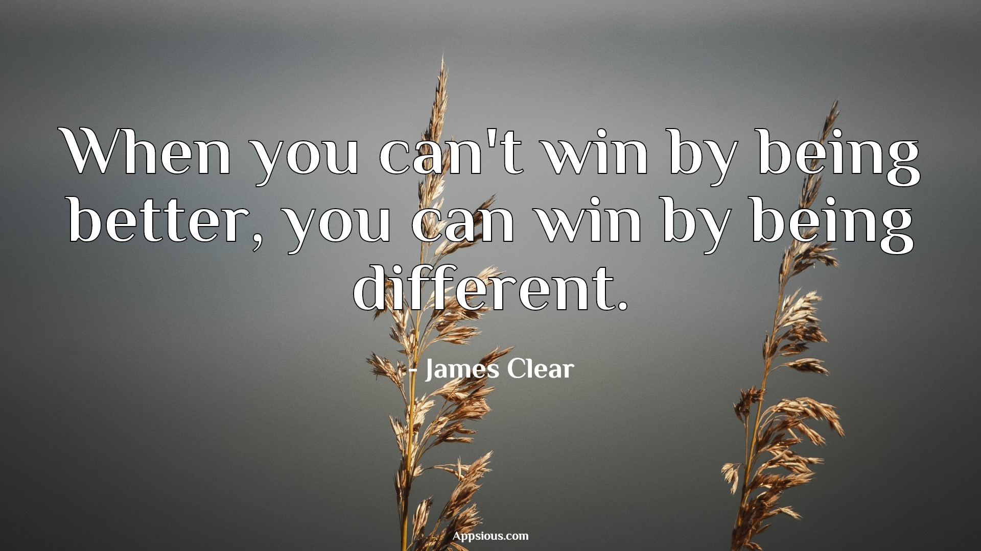 When you can't win by being better, you can win by being different.
