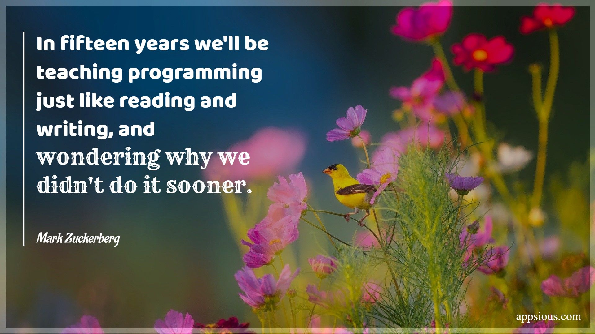 In fifteen years we'll be teaching programming just like reading and writing, and wondering why we didn't do it sooner.