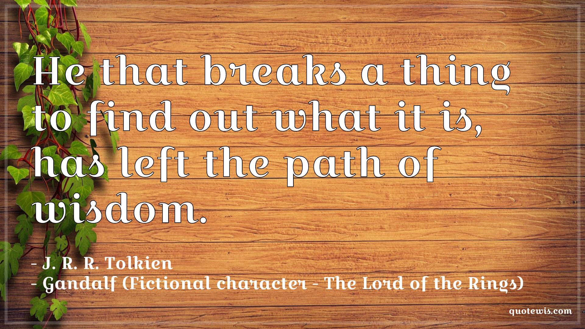He that breaks a thing to find out what it is, has left the path of wisdom.