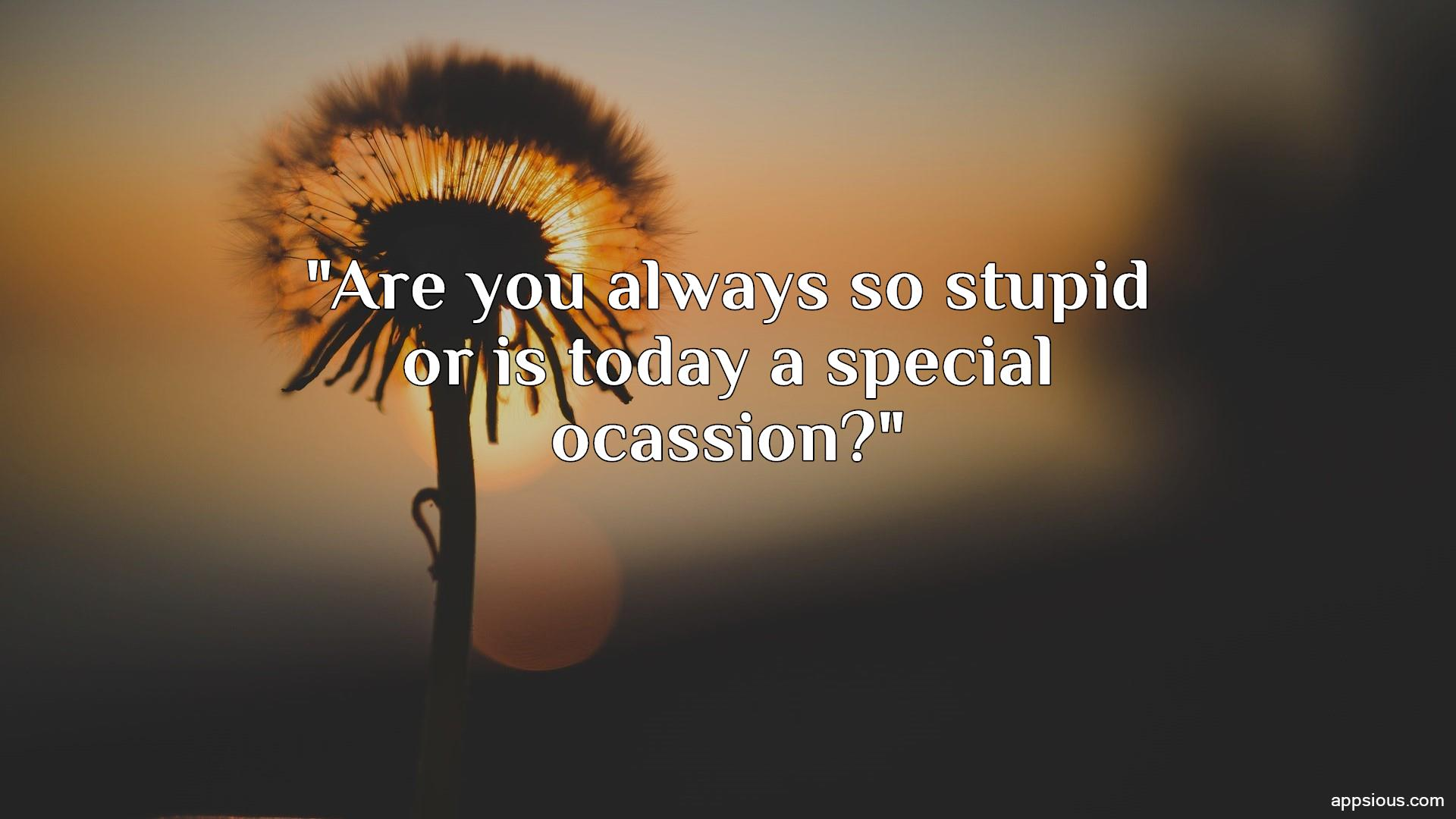 Are you always so stupid or is today a special ocassion?