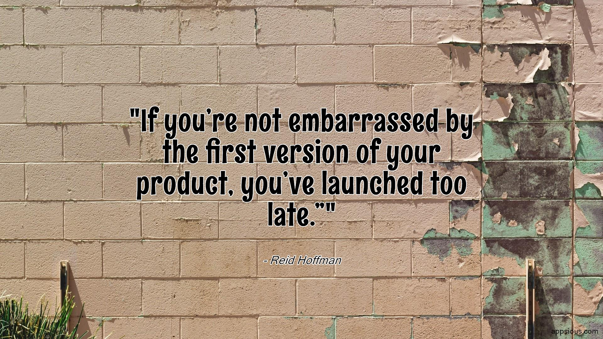 """If you're not embarrassed by the first version of your product, you've launched too late."""""""