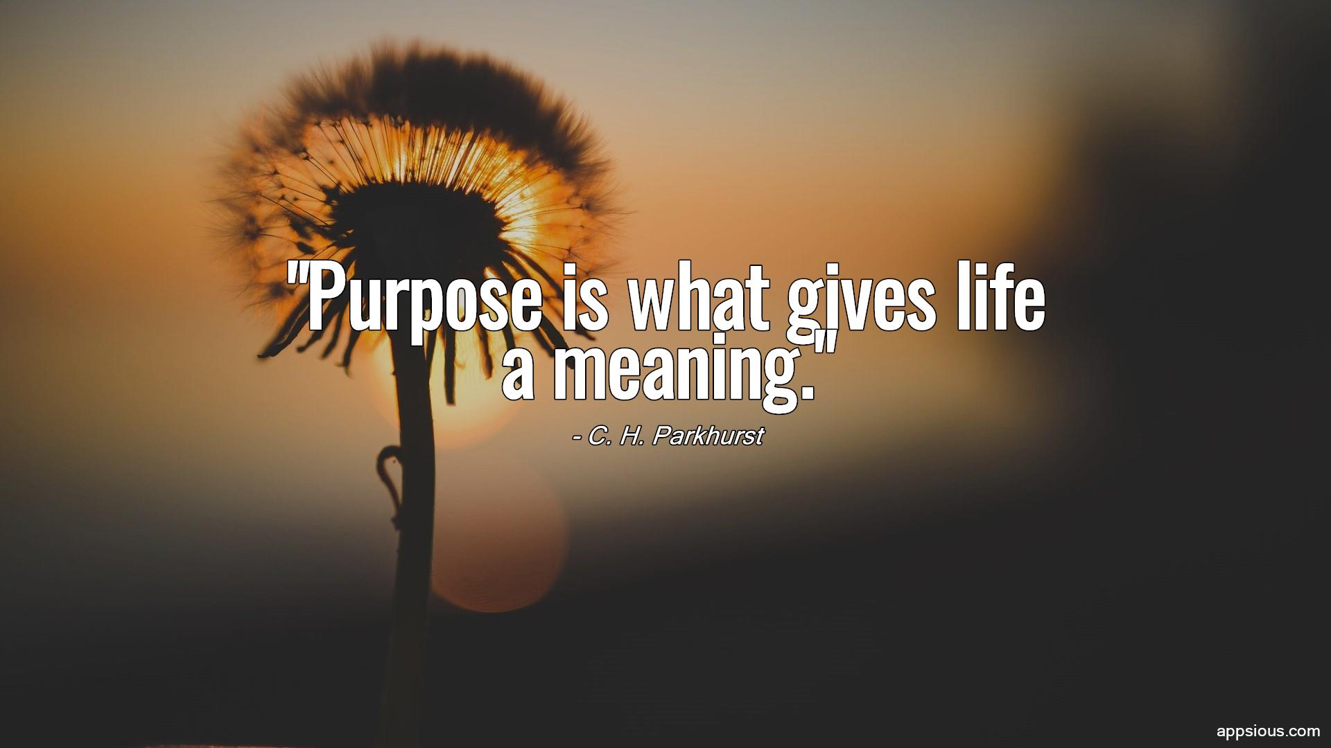 Purpose is what gives life a meaning.