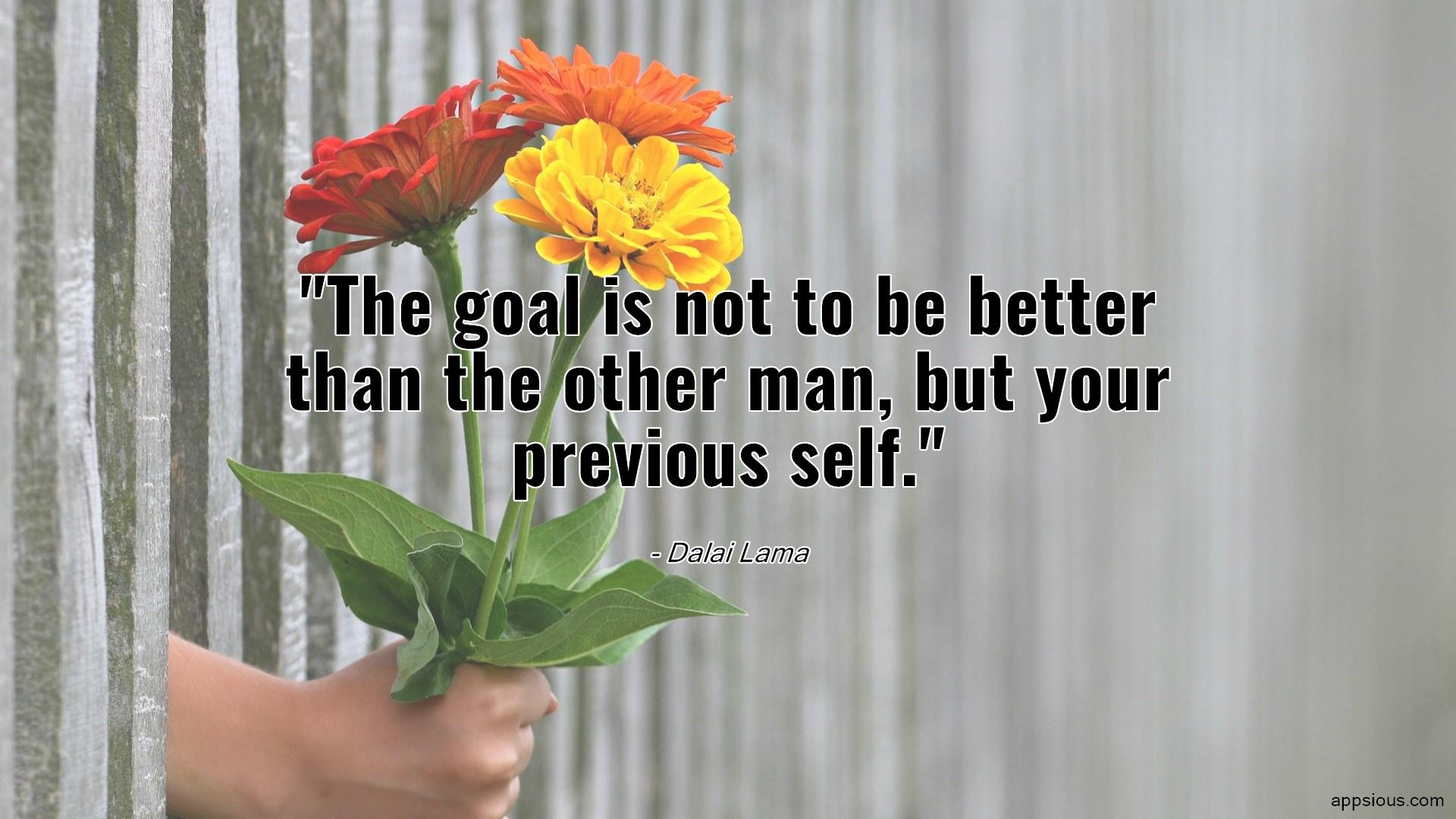 The goal is not to be better than the other man, but your previous self.