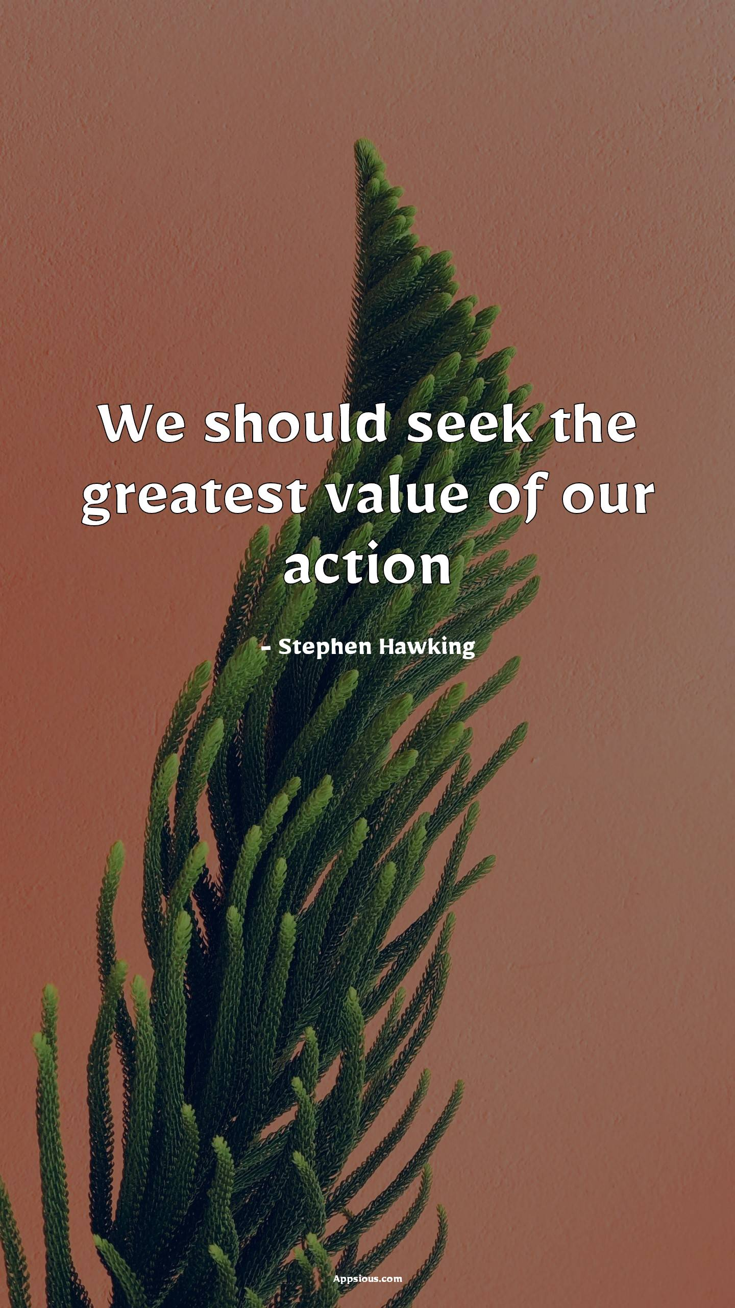 We should seek the greatest value of our action