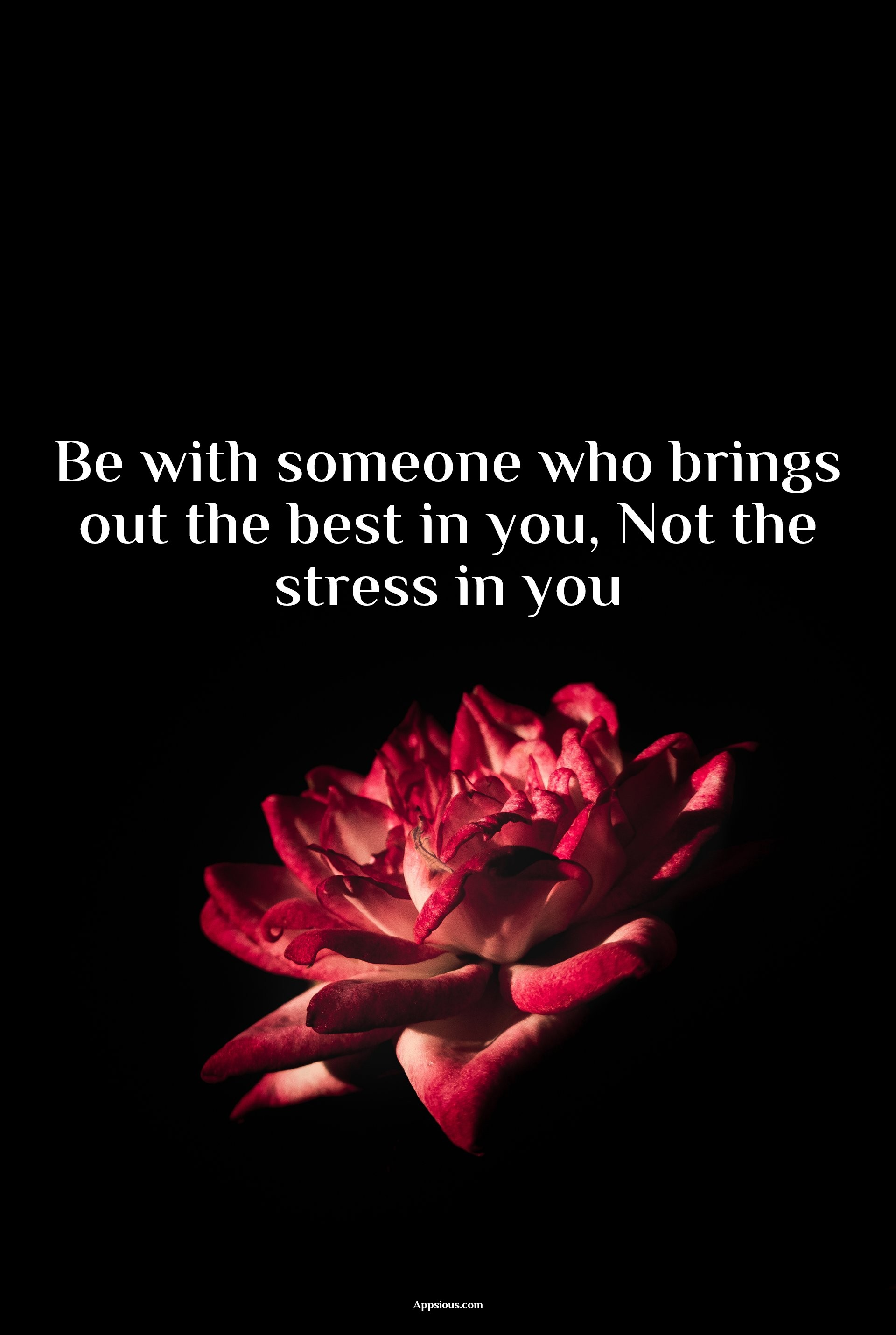 Be with someone who brings out the best in you, Not the stress in you
