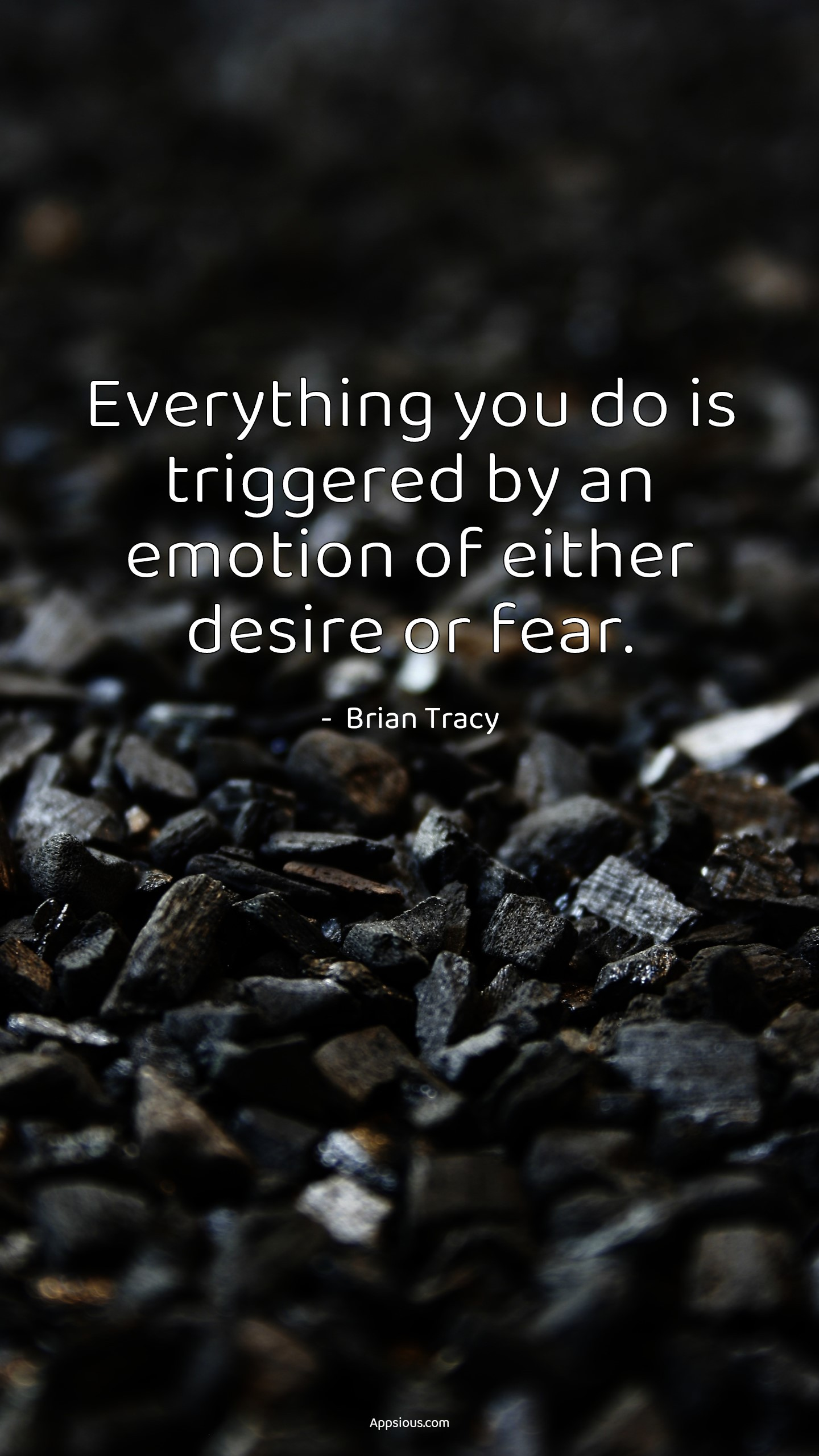 Everything you do is triggered by an emotion of either desire or fear.