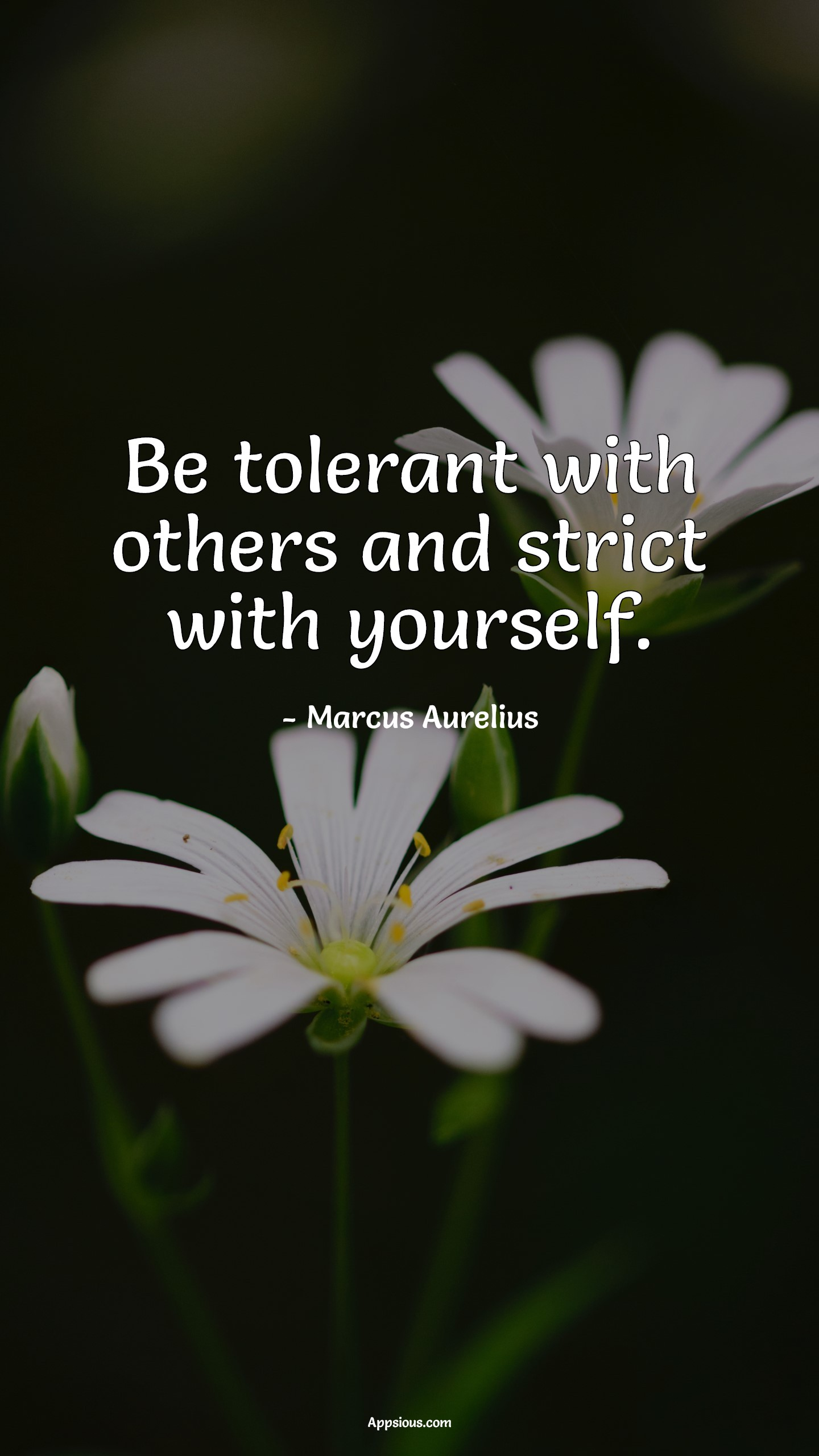 Be tolerant with others and strict with yourself.