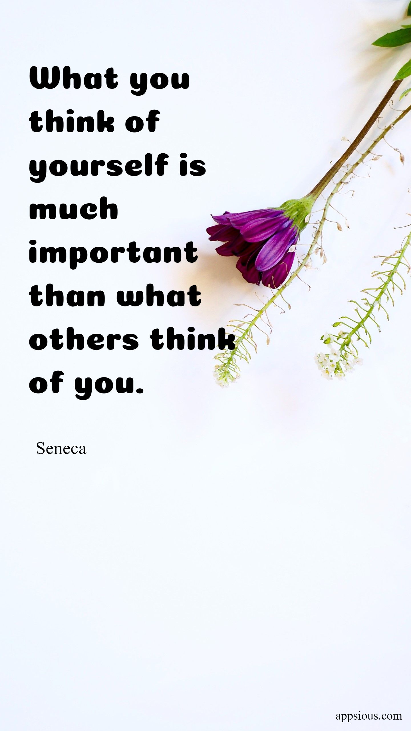 What you think of yourself is much more important than what others think of you.