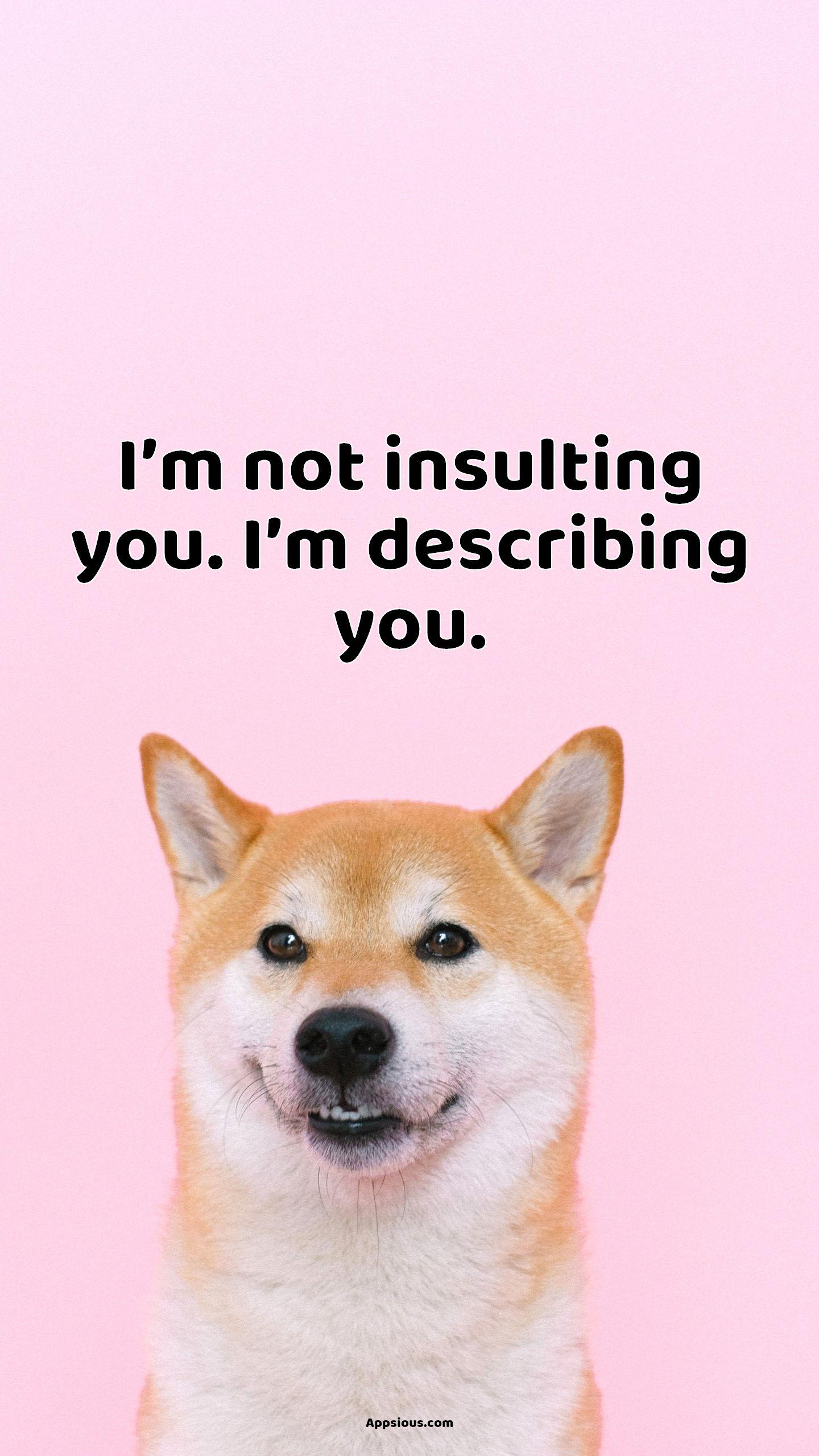 I'm not insulting you. I'm describing you.