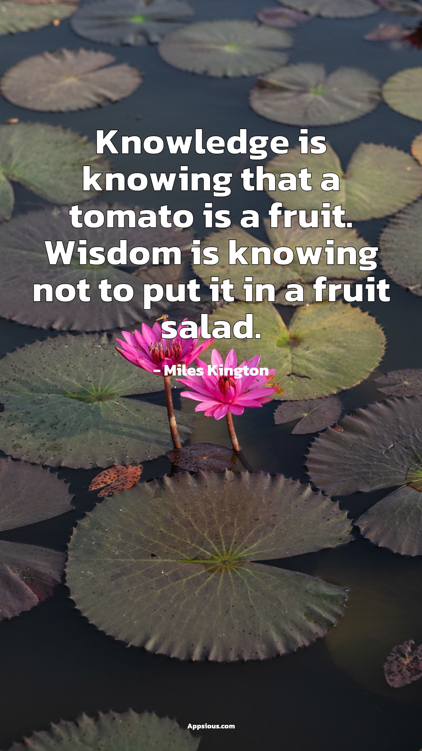 Knowledge is knowing that a tomato is a fruit. Wisdom is knowing not to put it in a fruit salad.