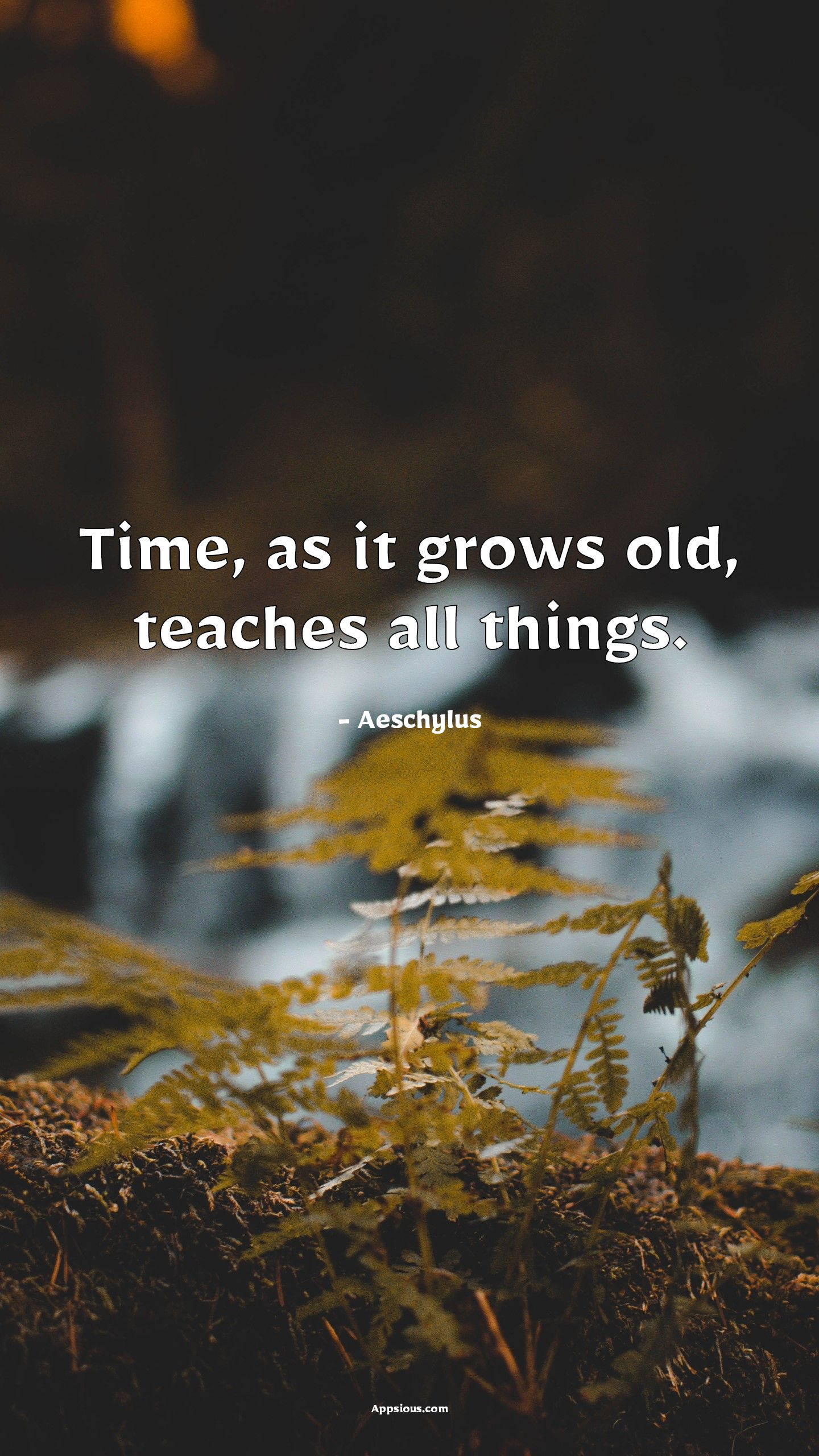 Time, as it grows old, teaches all things.