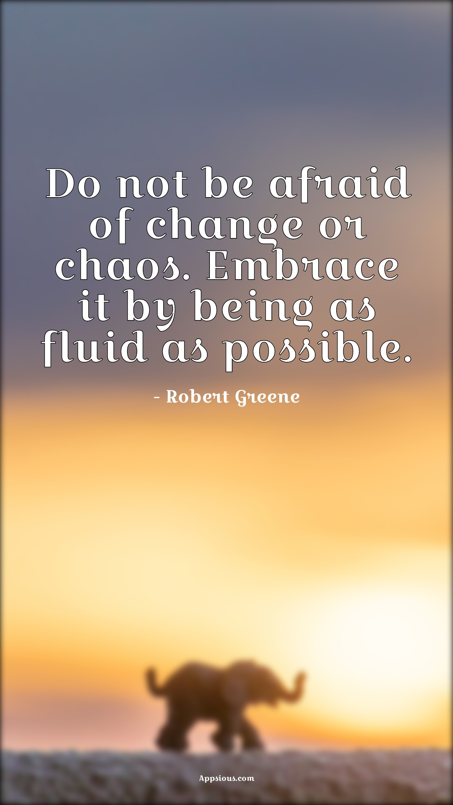 Do not be afraid of change or chaos. Embrace it by being as fluid as possible.