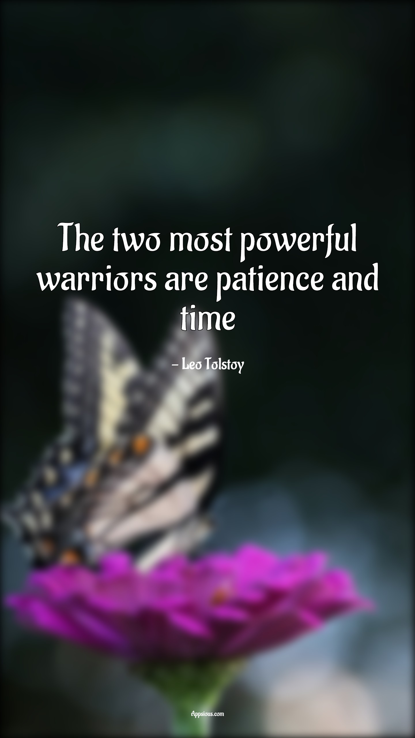 The two most powerful warriors are patience and time