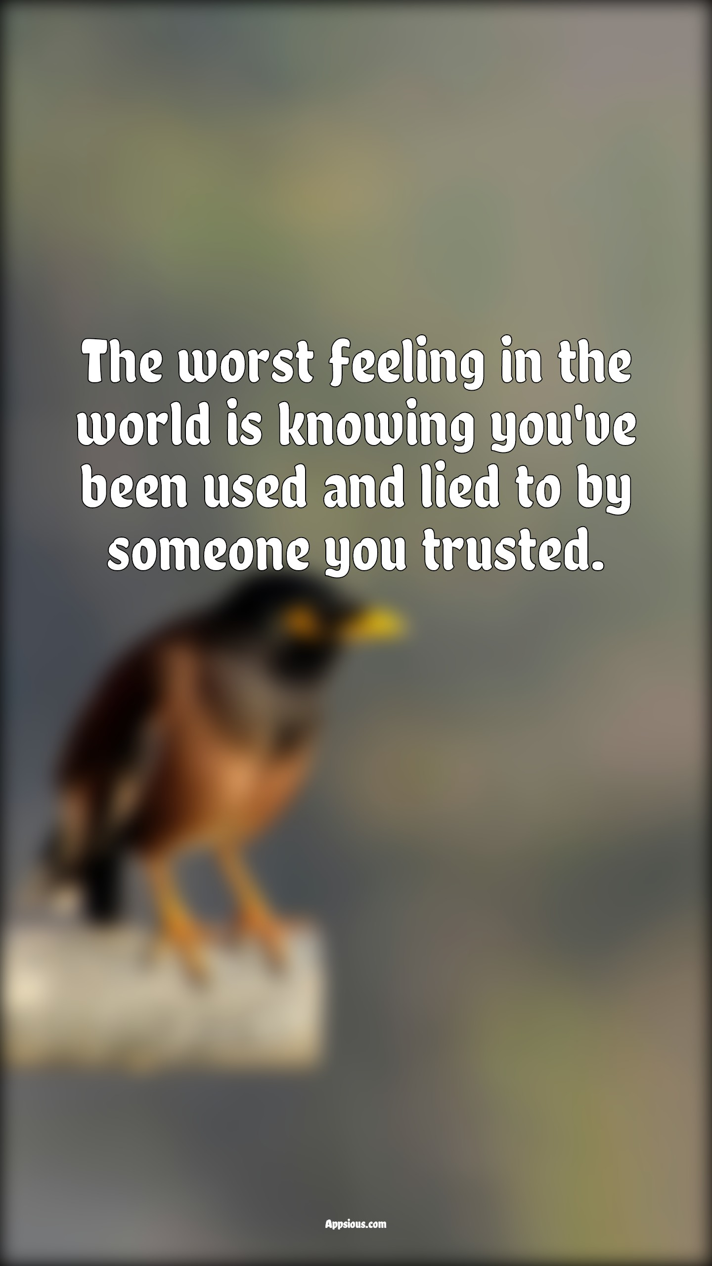 The worst feeling in the world is knowing you've been used and lied to by someone you trusted.