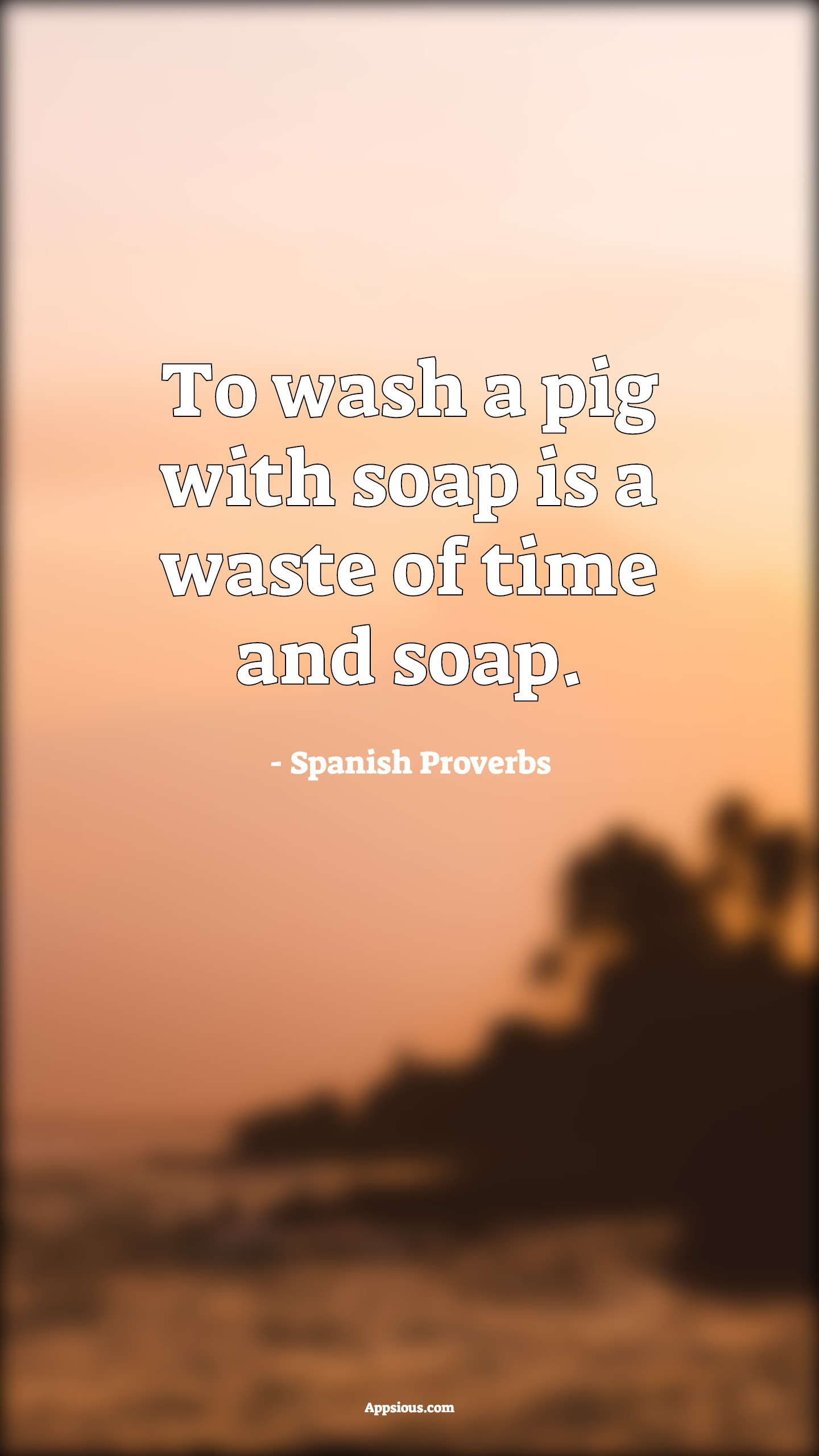 To wash a pig with soap is a waste of time and soap.