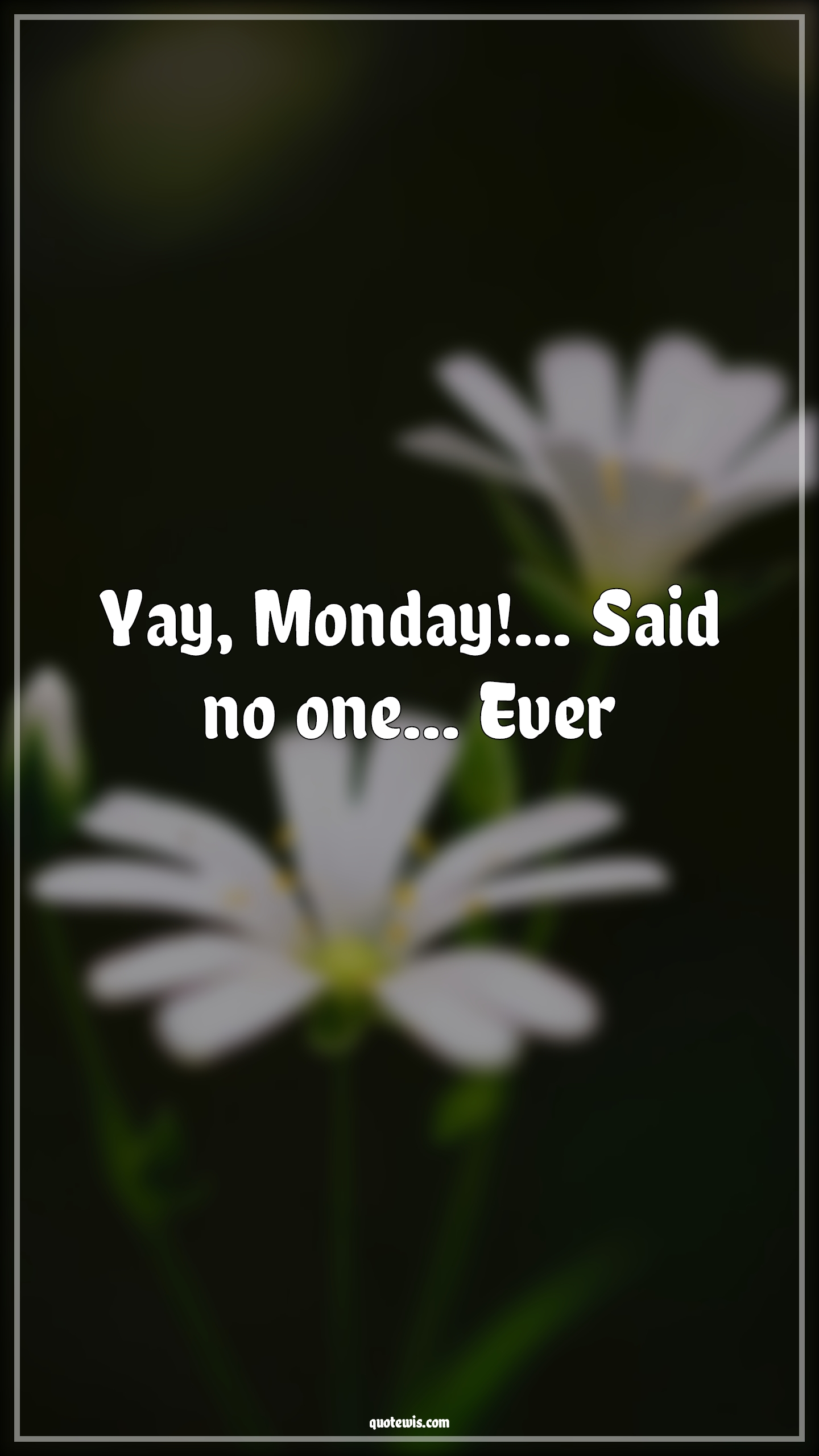 Yay, Monday!... Said no one… Ever