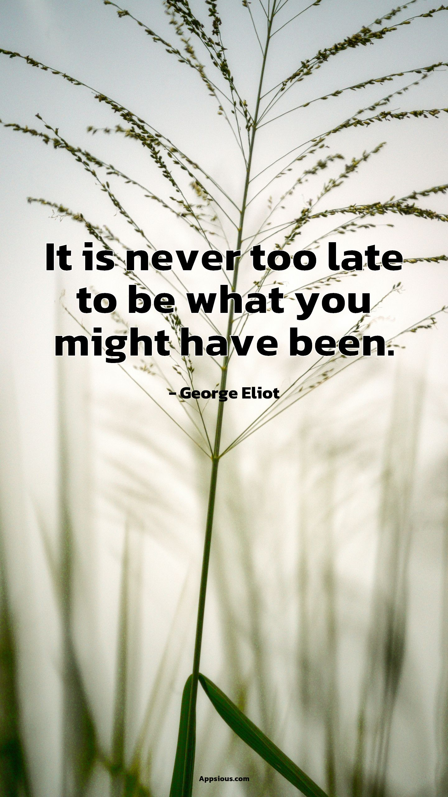 It is never too late to be what you might have been.