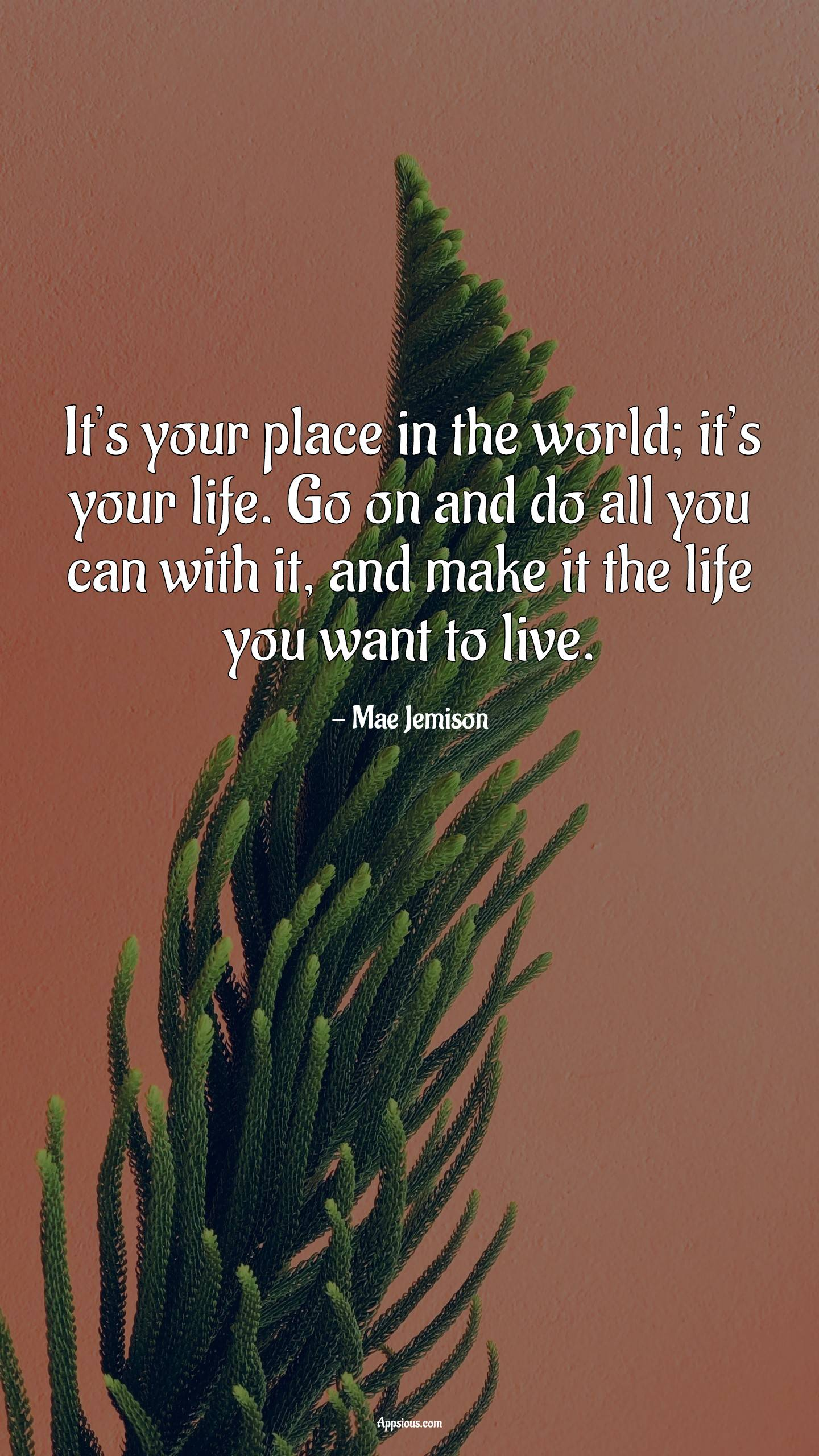 It's your place in the world; it's your life. Go on and do all you can with it, and make it the life you want to live.