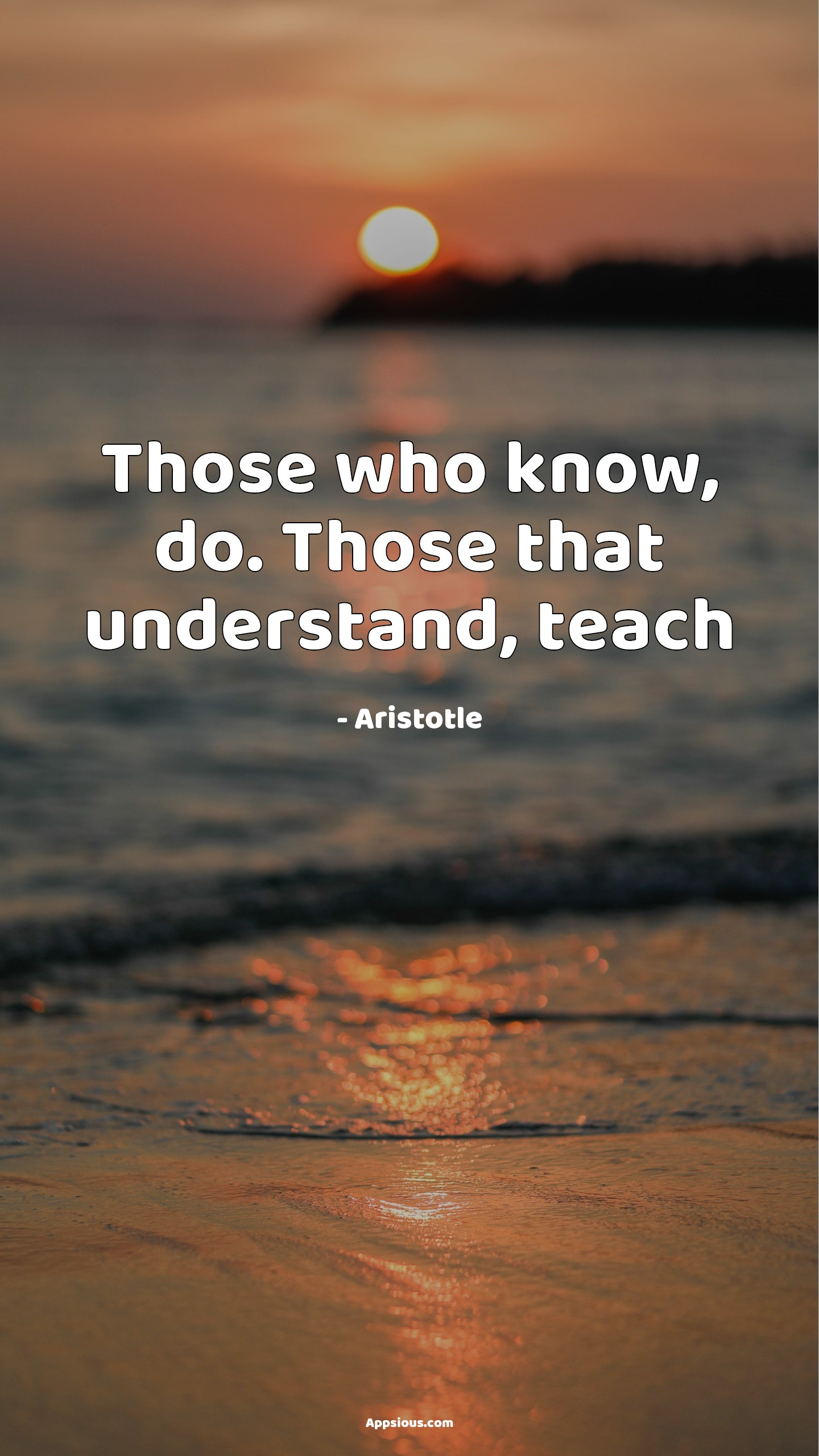 Those who know, do. Those that understand, teach