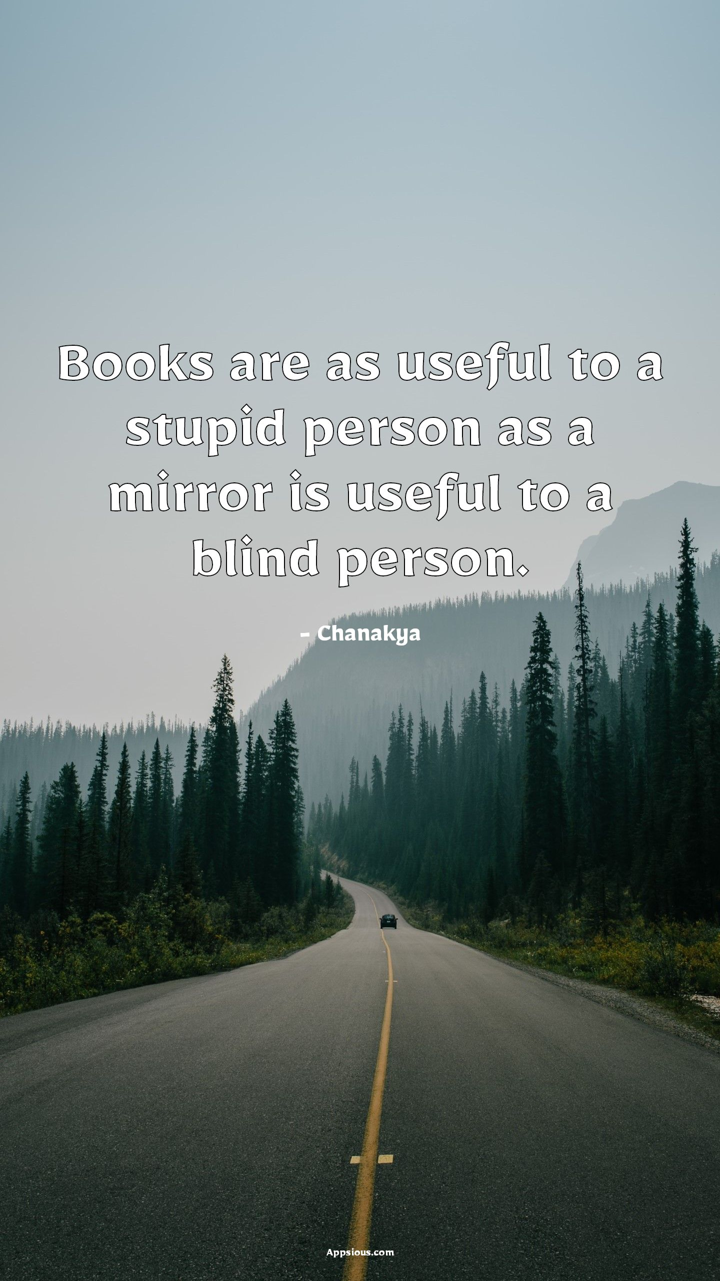 Books are as useful to a stupid person as a mirror is useful to a blind person.