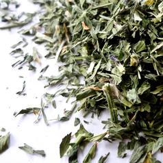 Alfalfa leaf cs org
