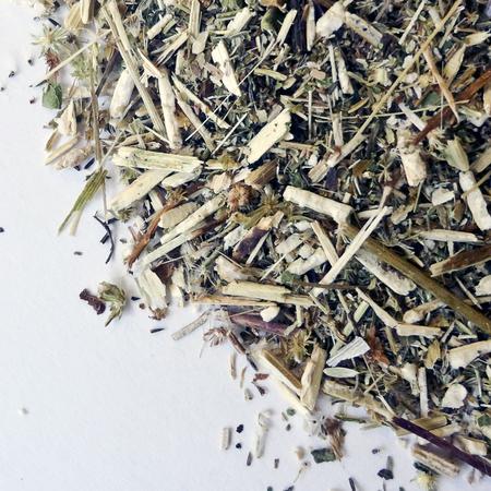 Boneset herb cs