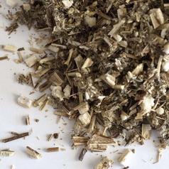 Mugwort herb cs