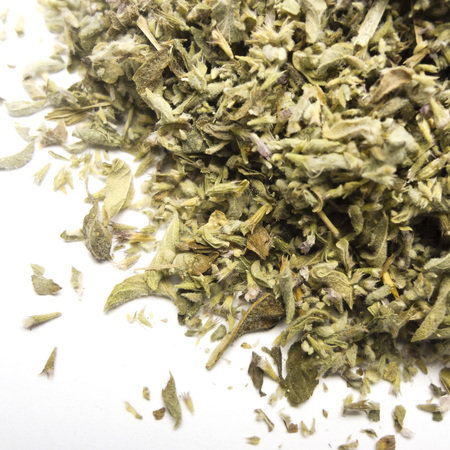 Pennyroyal herb cs 4