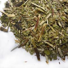 Scullcap herb cs