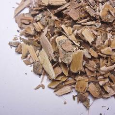 Witchhazel bark cs01