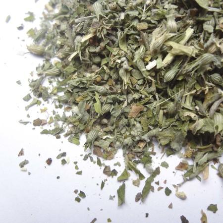 Catnip leaf cs org02