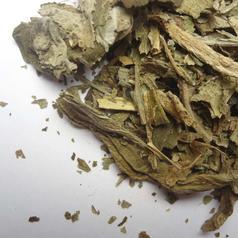 Lobelia herb cs02