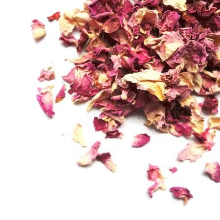 Rose petals pink03