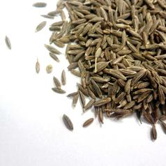 Cumin seed w1