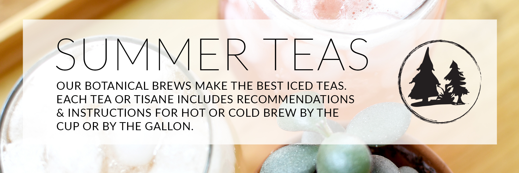 Summerfavs web banner