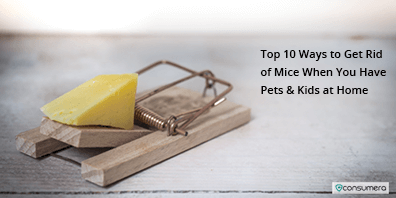 https://s3.amazonaws.com/live.consumera.com/pest-controll/1589102939344_rc_thumb_Top_10_Ways_to_Get_Rid_of_Mice_When_You_Have_Pets_&_Kids_at_Home.png