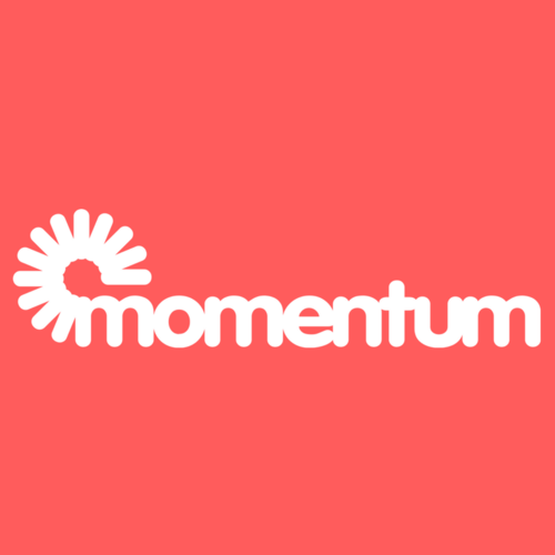 Momentum IT Services FZE logo